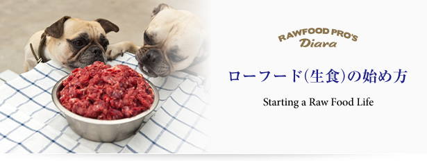 ローフード(生食)の始め方